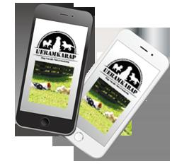 スマートフォン用アプリ「うえらんから糸島」